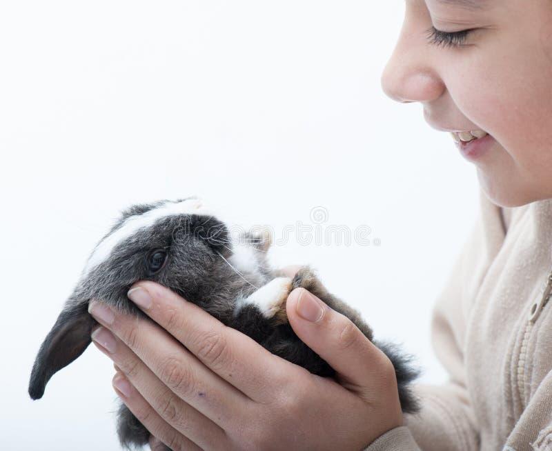 Piccolo coniglio sveglio fotografie stock