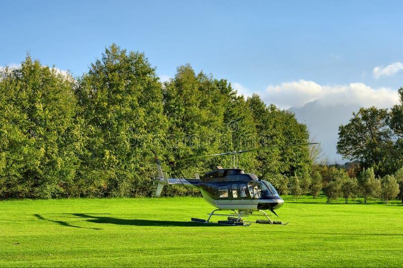Elicottero Piccolo : Piccolo elicottero privato su erba contro la montagna