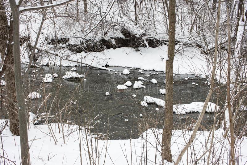 Piccolo fiume che passa la foresta innevata di inverno fotografie stock