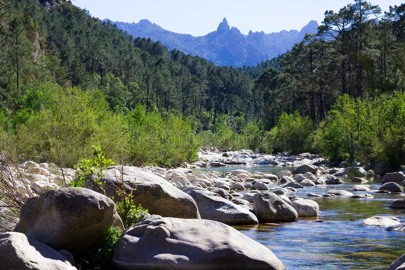 Piccolo fiume in colline rocciose in montagne di de Bavella del passo, Corsica immagini stock libere da diritti