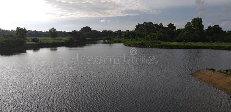 Piccolo fiume della Sri Lanka immagine stock libera da diritti