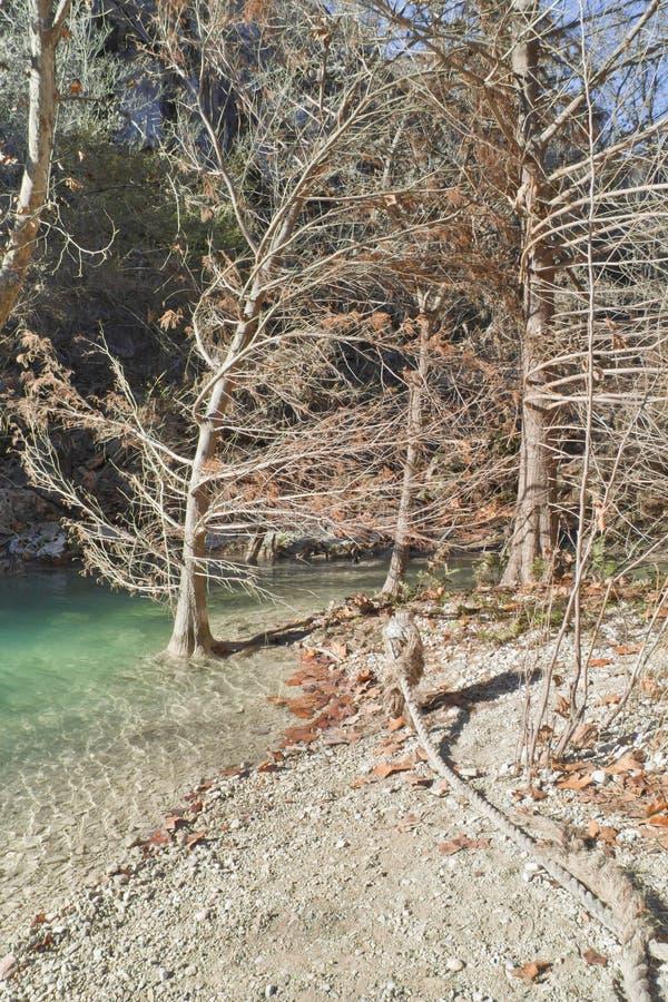 Piccolo fiume a Hamilton Pool immagine stock