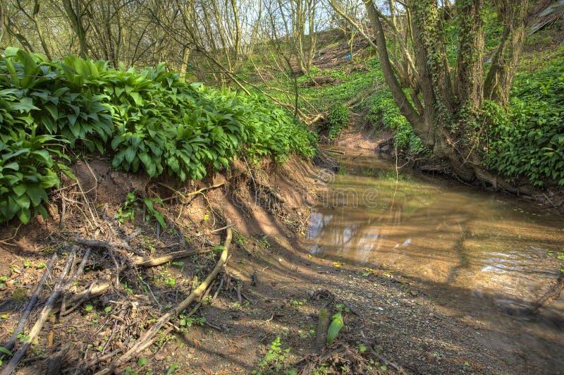 Piccolo fiume, Inghilterra fotografie stock