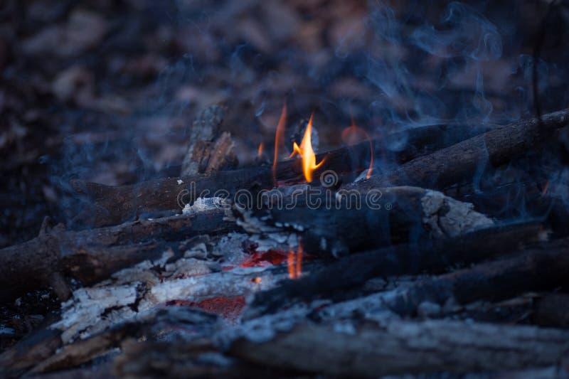 Piccolo fuoco di accampamento nella sera immagini stock libere da diritti