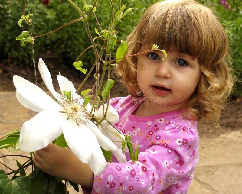 Piccolo giardiniere fotografie stock