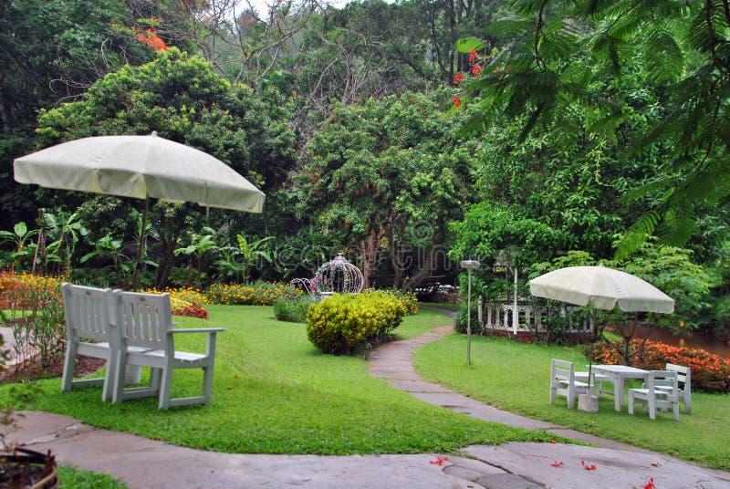 Piccolo giardino nella località di soggiorno fotografie stock libere da diritti