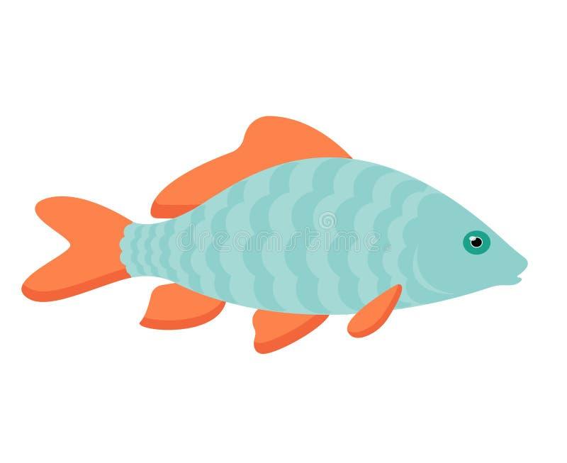 Piccolo illustrazione del pesce della carpa Un singolo animale, vista laterale, fine su Fondo bianco attingente grafico disegnato illustrazione vettoriale