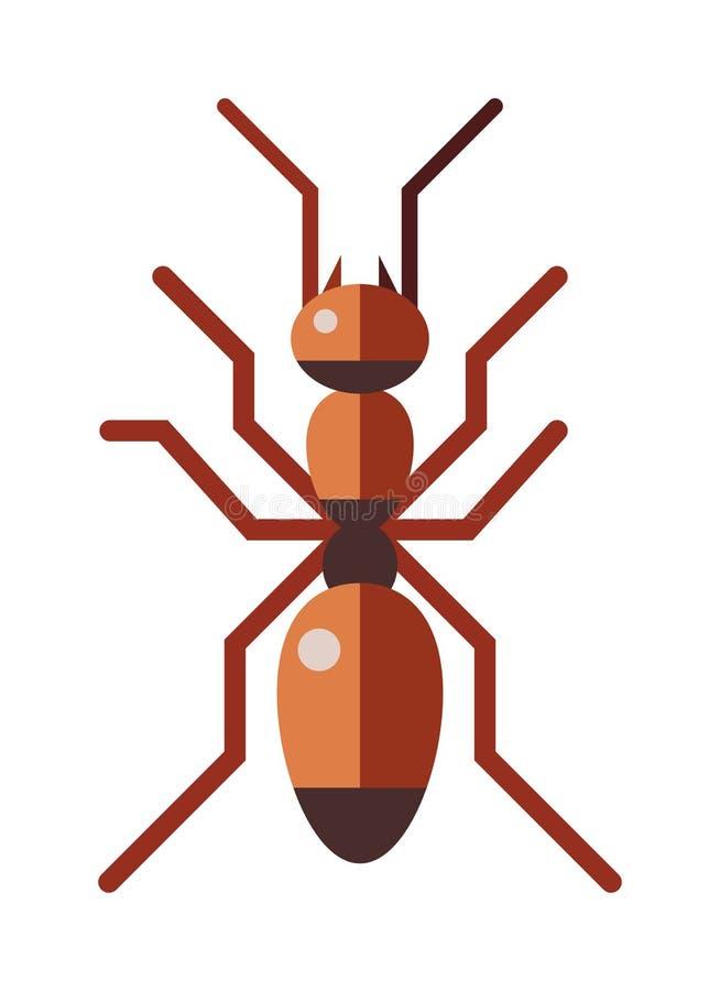 Piccolo insetto dell 39 antenna della formica di rufa rosso for Piccolo piano di pagamento della casa