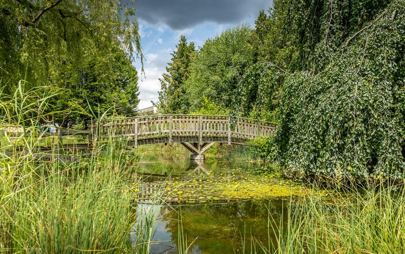 Piccolo lago artificiale, ponte di legno 1 immagine stock libera da diritti