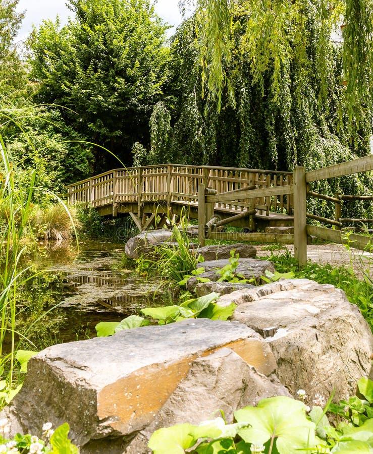 Piccolo lago artificiale, ponte di legno 4 fotografia stock libera da diritti