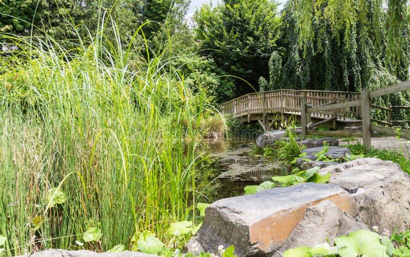 Piccolo lago artificiale, ponte di legno 3 fotografia stock