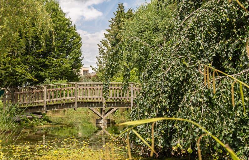Piccolo lago artificiale, ponte di legno 8 fotografia stock
