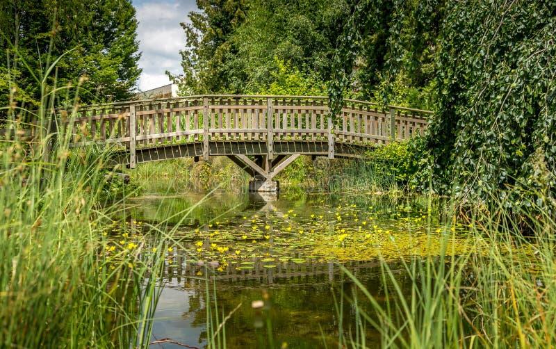 Piccolo lago artificiale, ponte di legno 9 immagini stock