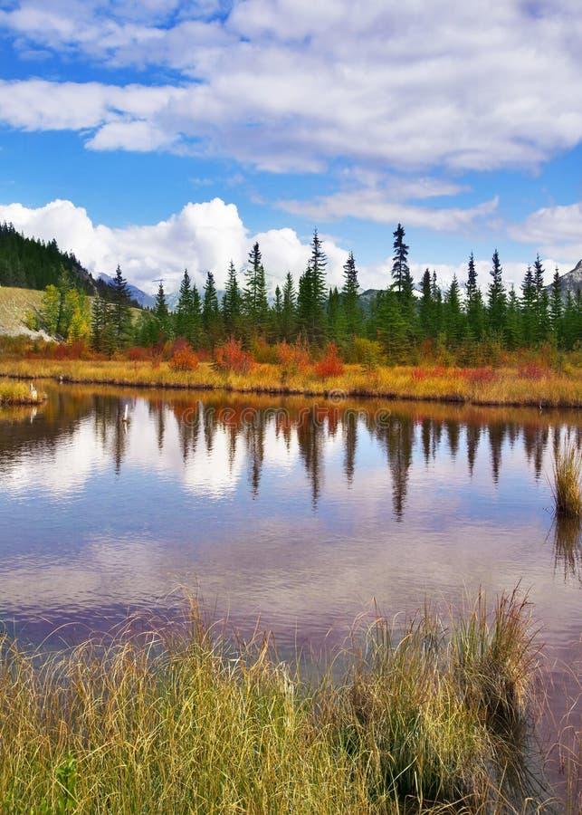 Piccolo lago brillante immagini stock libere da diritti