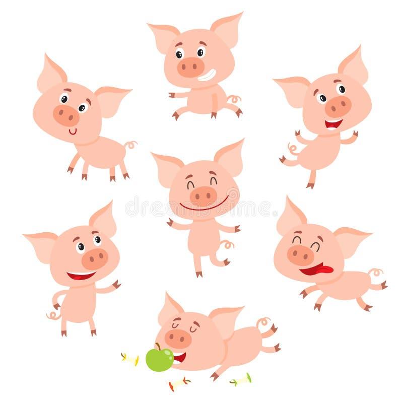 Piccolo maiale sorridente divertente in varie pose, illustrazione di vettore del fumetto illustrazione vettoriale