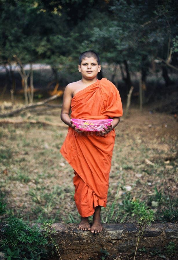 Piccolo monaco in Dambulla immagini stock libere da diritti
