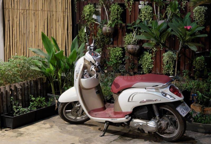 Piccolo motorino di motore elegante di Honda parcheggiato vicino ad una parete decorata con i vasi da fiori con fotografie stock