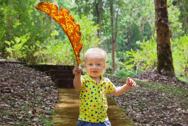 Piccolo neonato che porta la passeggiata caduta gigante della foglia in parco immagini stock libere da diritti