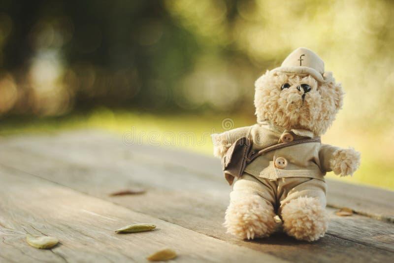Piccolo orso immagini stock
