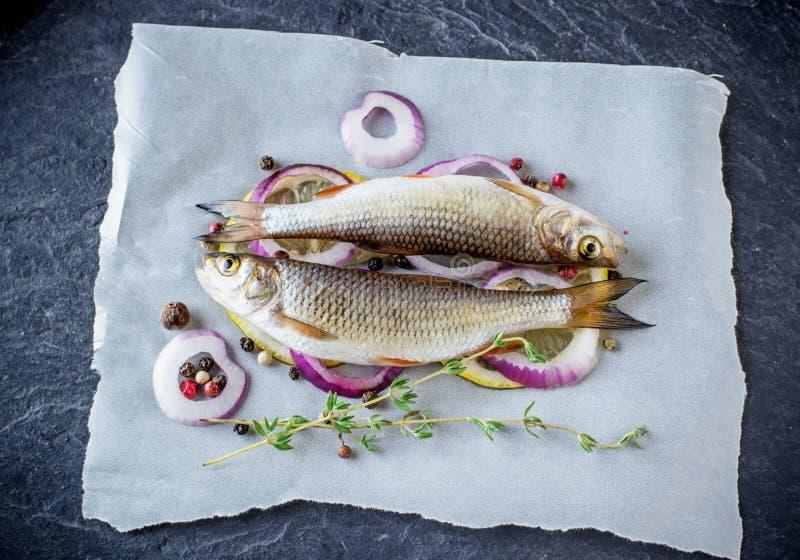 Piccolo pesce fresco del fiume due su uno strato di immagine stock