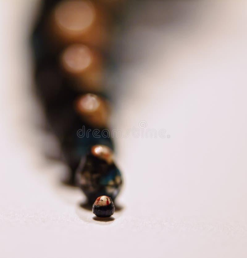 Piccolo Più Piccolo Più Piccolo Fotografia Stock