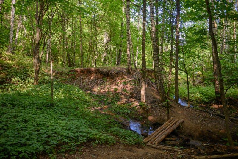 Piccolo ponte di legno attraverso la corrente fotografia stock