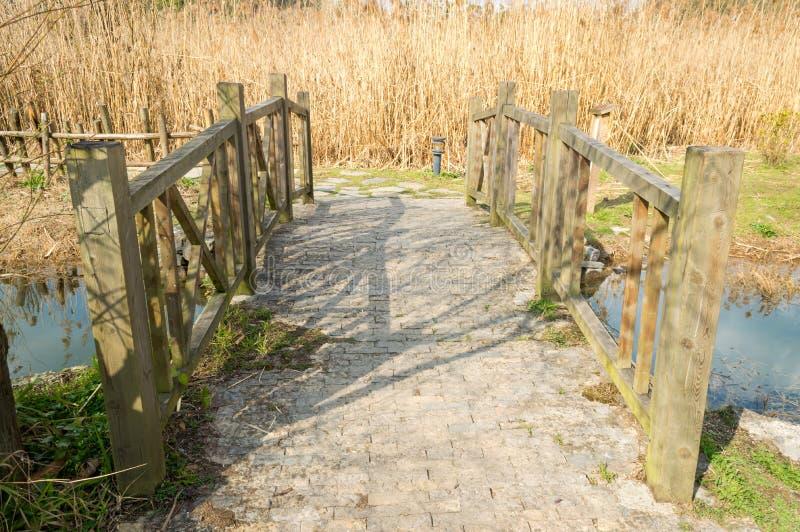 Piccolo ponte di pietra fotografie stock libere da diritti