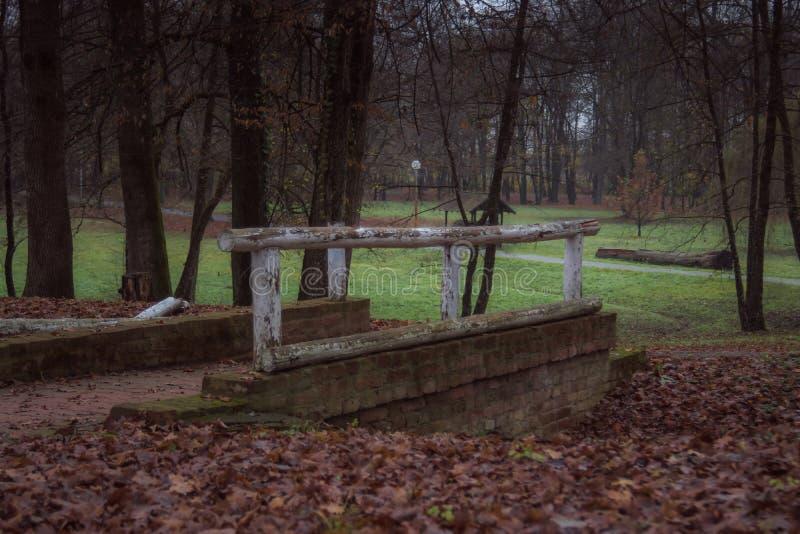 Piccolo ponte nel parco durante l'autunno immagine stock