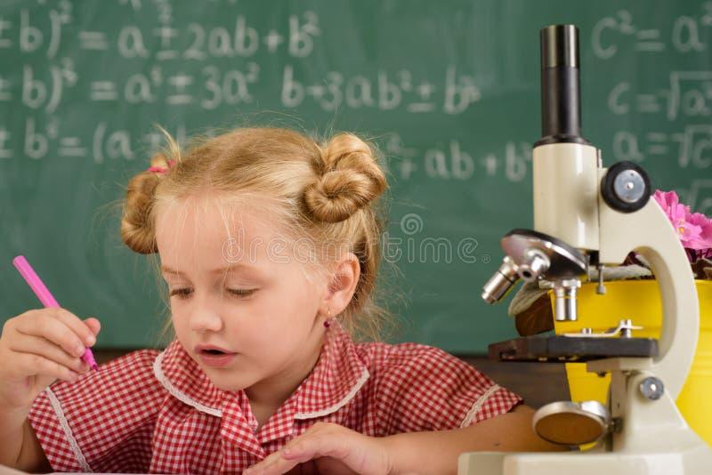 Piccolo scienza di studio dello scienziato a scuola Ricerca della ragazza dello scienziato con il microscopio in laboratorio fotografia stock