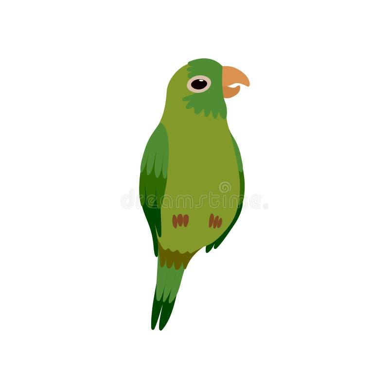 Piccolo uccello del pappagallo, illustrazione verde sveglia di vettore dell'animale domestico della casa di Budgie royalty illustrazione gratis