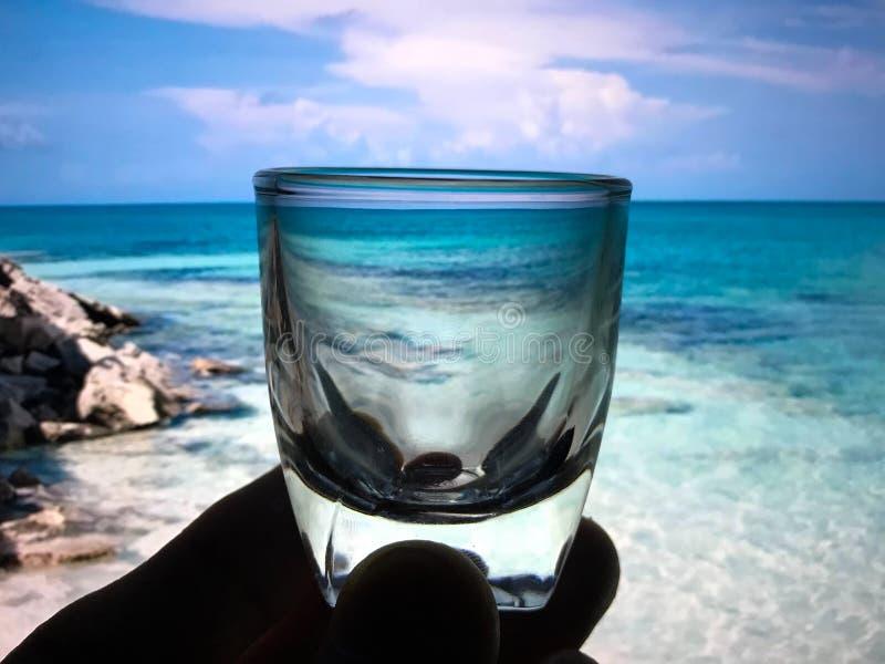 Piccolo vetro per uso nelle bevande fotografia stock