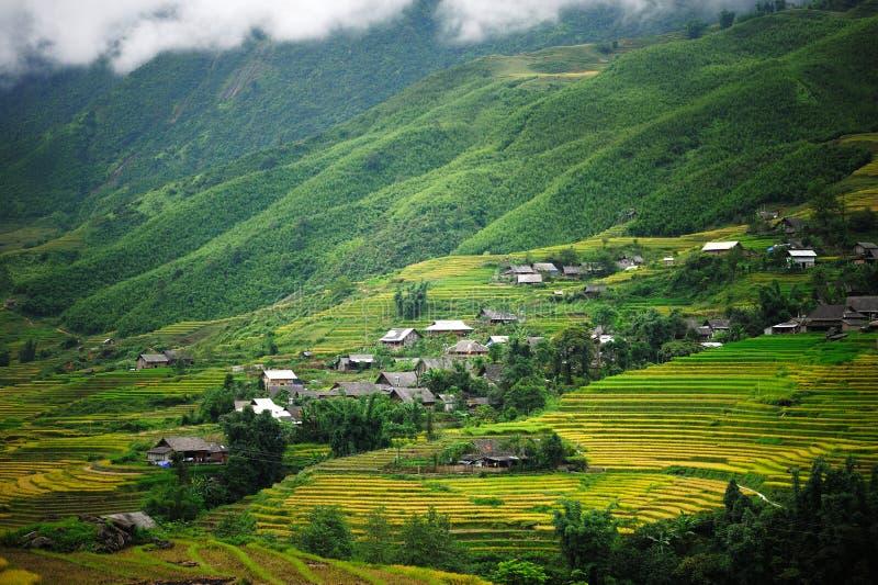 Piccolo villaggio con i terrazzi del riso immagine stock