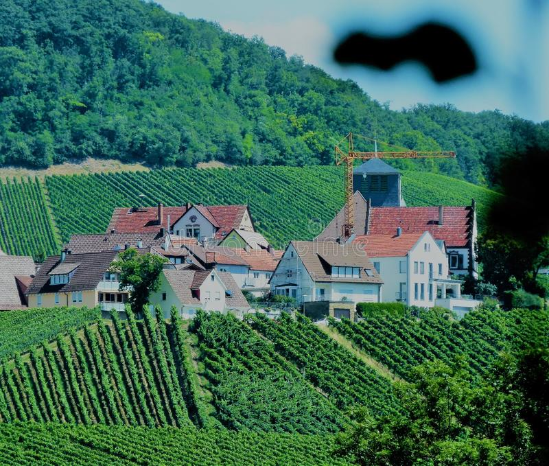 Piccolo villaggio d'agricoltura in mezzo alla vigna fotografia stock libera da diritti