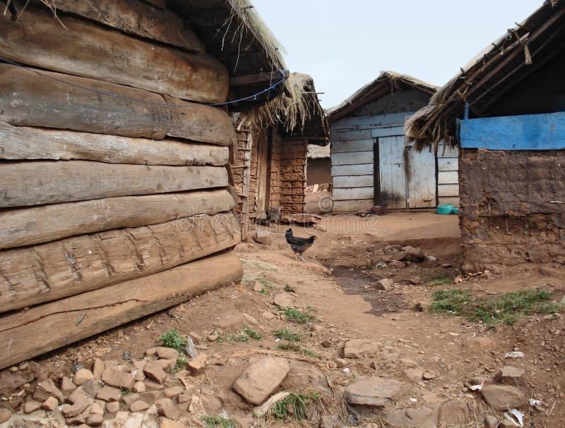 Piccolo villaggio su un'isola nel lago Vittoria fotografia stock libera da diritti