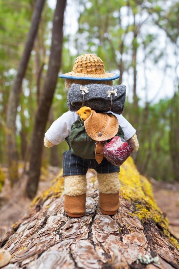 Piccolo zaino, stuoia di sonno, tazza da caffè - Teddy Bear Hiker fotografia stock libera da diritti