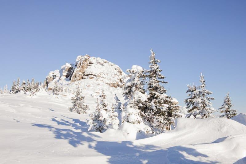 Piceas y rocas nevadas Montaña Zyuratkul, tierras del invierno fotos de archivo libres de regalías