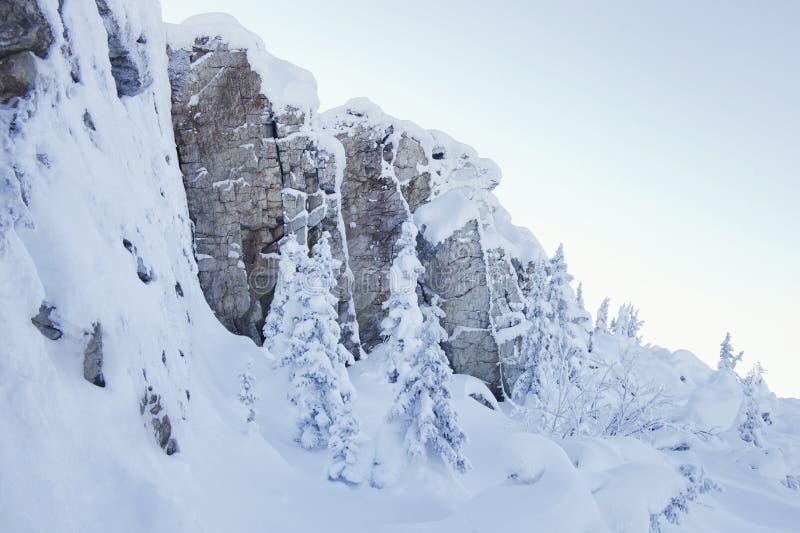 Piceas y rocas nevadas Montaña Zyuratkul, tierras del invierno imagen de archivo libre de regalías