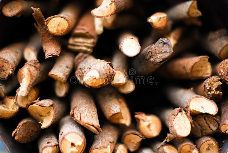 Pices des Holzes stockfotografie