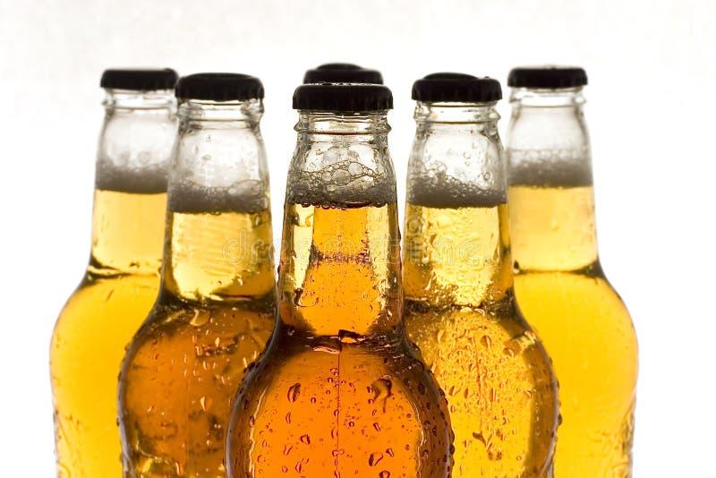 Download Picie piwa obraz stock. Obraz złożonej z dużo, alkoholiczka - 143655