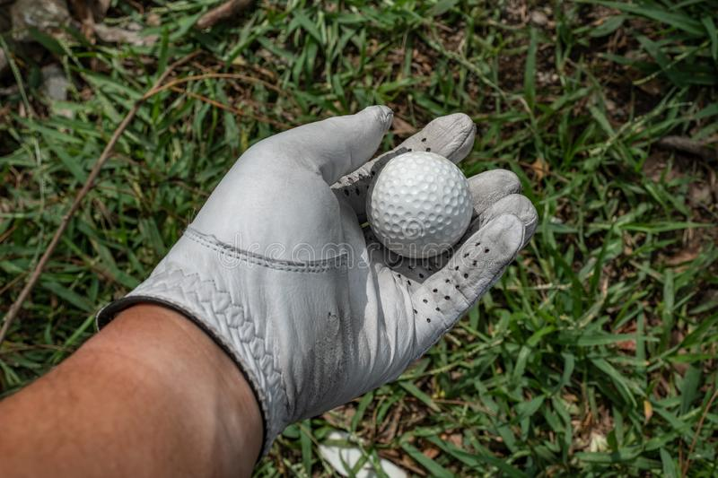 pick up a golfball on grass royalty free stock photos