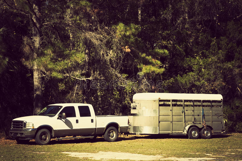 Pick up with horse trailer. Parked in the forest royalty free stock photos