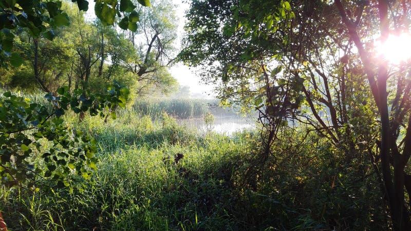 Pickerington Ponds Metro Park Free Public Domain Cc0 Image