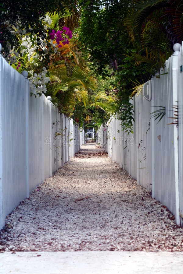Download Picket Fence Walkway stock image. Image of florida, hiking - 5445445