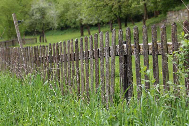 Picket fences. / Fence of the fence - the infield fence stock photos