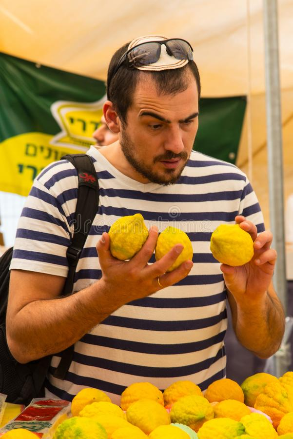 Picking a Citron Etrog for the Sukkot Holiday stock photo