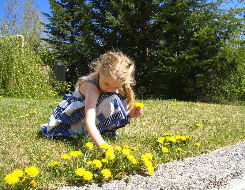 Picking flowers for Mom celebrating Mother's day stock photography
