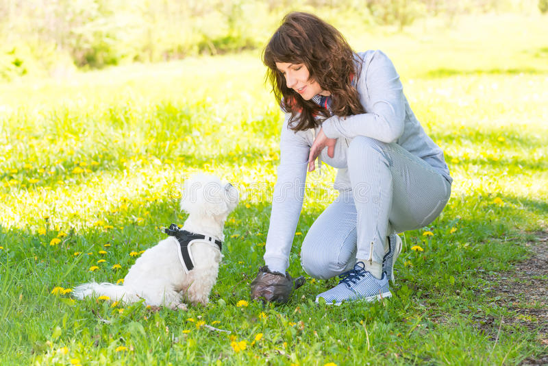 Picking up dog poop royalty free stock photography