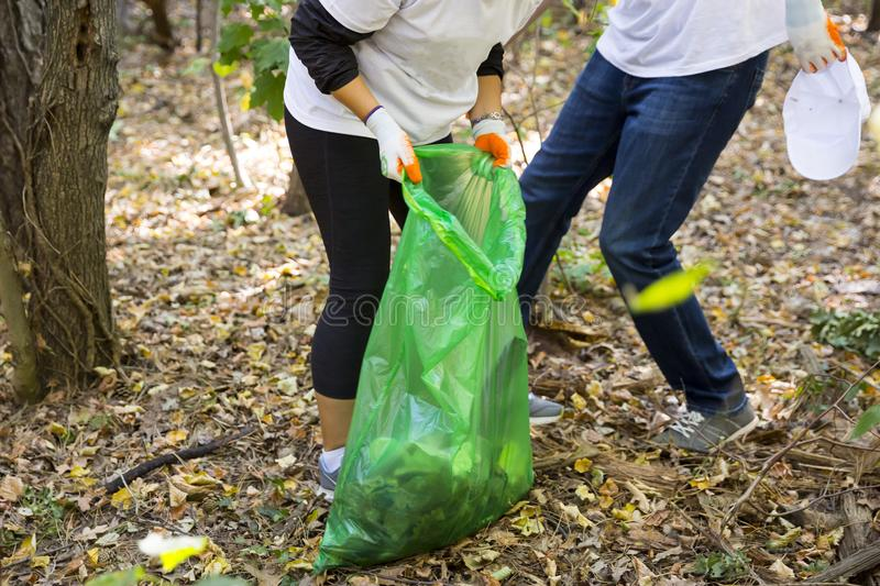 Picking up trash in the forest. Ecology people cleaning the park with green garbage bag. Unrecognizable people stock photo