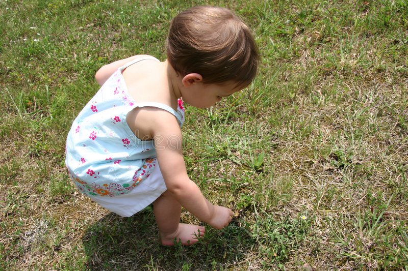 Download Picking weeds stock photo. Image of girls, baby, cute, little - 164358