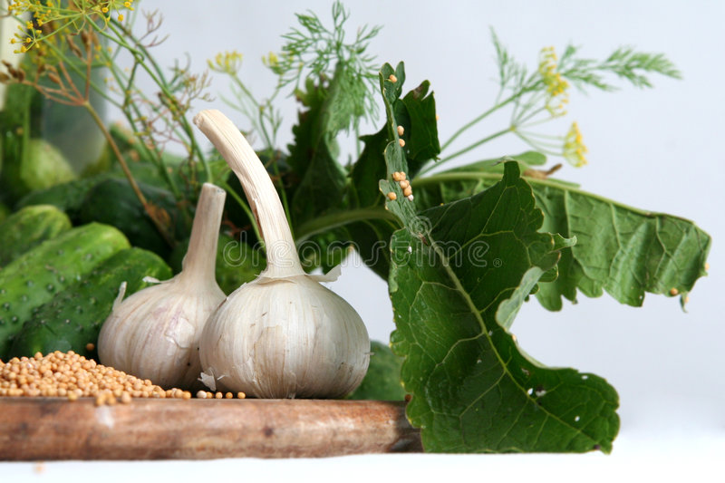 Download Pickle Ingredients Stock Photos - Image: 1416673